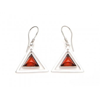 Buckles of ears amber triangle